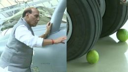 Lemon underneath the Aircraft wheels! Trolled by Netizens