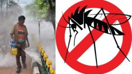 People must be aware of Dengue fever!